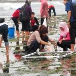 Pelatihan & Praktek Lapangan KKH 2 di Sundak